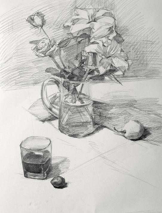 花卉静物素描步骤